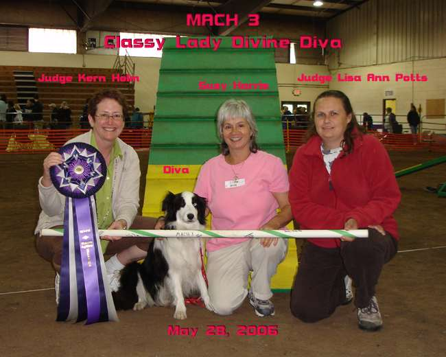 Judges, Diva and Susy with MACH3 ribbon and bar